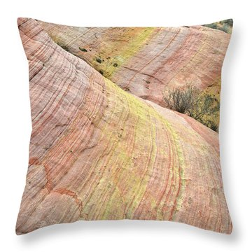 Throw Pillow featuring the photograph Valley Of Fire Pastel Dunes by Ray Mathis