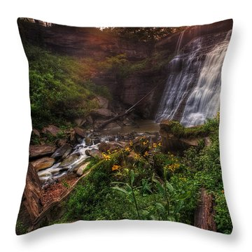 Valley Of Golden Light Throw Pillow