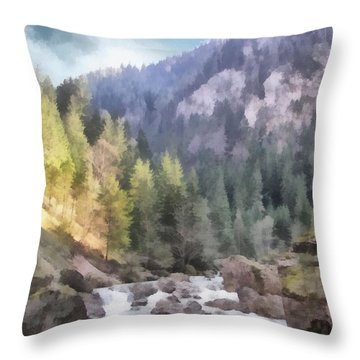 Valley Of Light And Shadow Throw Pillow