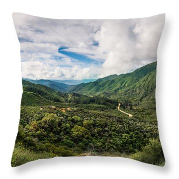 Valley Of Promise Throw Pillow