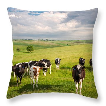 Valley Of The Cows Throw Pillow