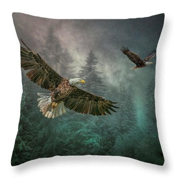 Valley Of The Eagles. Throw Pillow