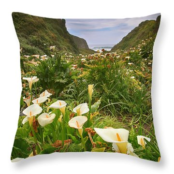 Valley Of The Lilies Throw Pillow