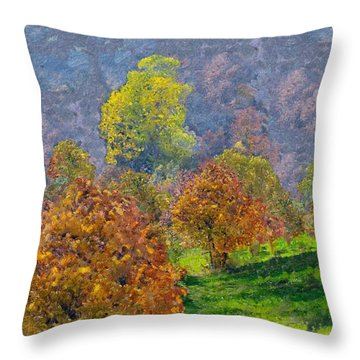 Valley Of The Trees Throw Pillow by Enzie Shahmiri