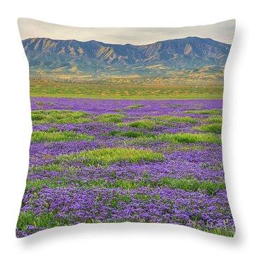 Valley Phacelia And Caliente Range Throw Pillow