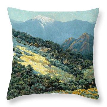 Valley Splendor Throw Pillow