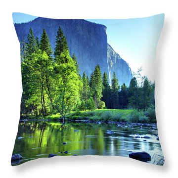 Valley View Morning Throw Pillow by Rick Berk