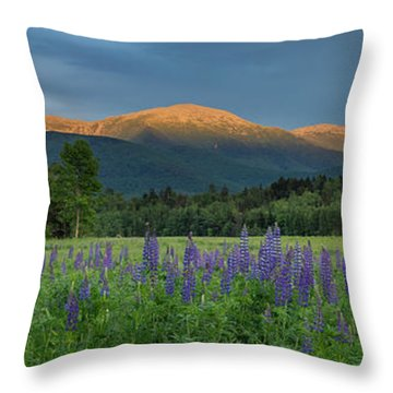 Valley Way Lupine Sunset Throw Pillow