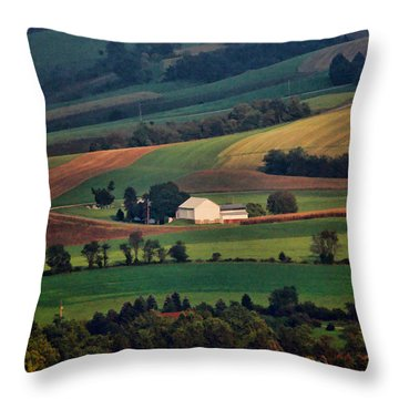 Valley Throw Pillow