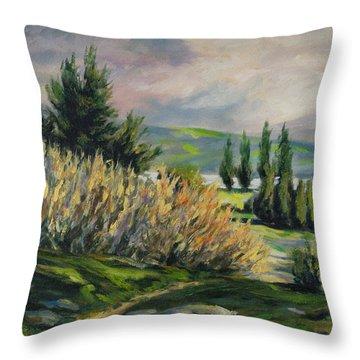 Valleyo Throw Pillow by Rick Nederlof