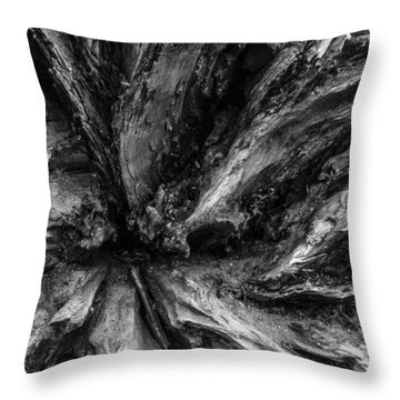 Valleys Throw Pillow