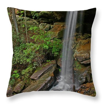 Van Hook Falls 2 Throw Pillow