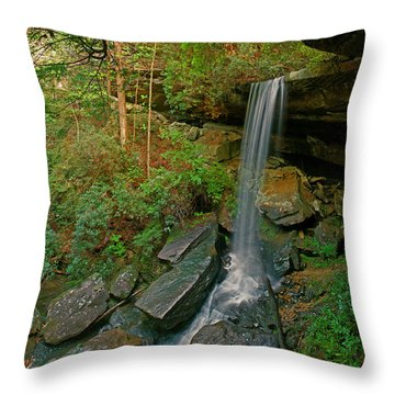Van Hook Falls Throw Pillow