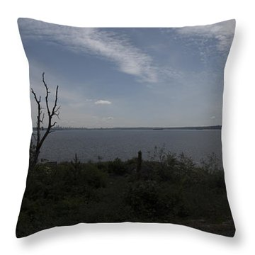 Vancouver From Afar Throw Pillow by Rod Wiens