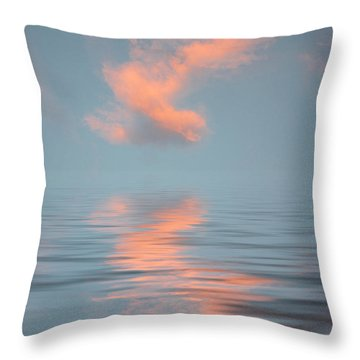 Vapor 2 Throw Pillow by Jerry McElroy