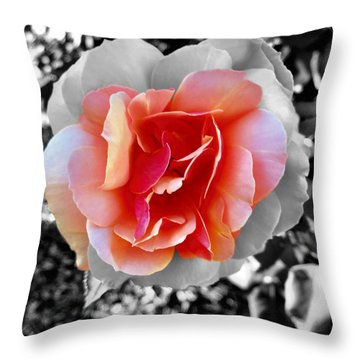 Variation Throw Pillow
