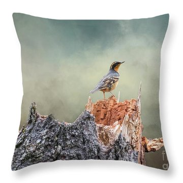 Varied Thrush On A Dead Tree Throw Pillow