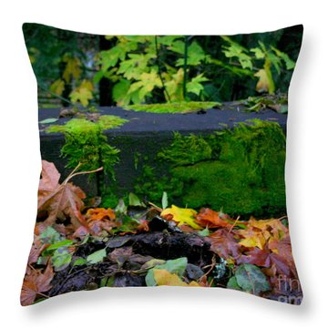 Varigated Fall Throw Pillow by Marie Neder