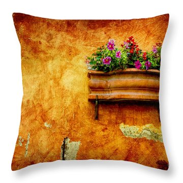 Vase Throw Pillow by Silvia Ganora