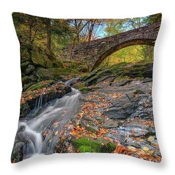 Throw Pillow featuring the photograph Vaughan Brook And Arch Bridge by Rick Berk