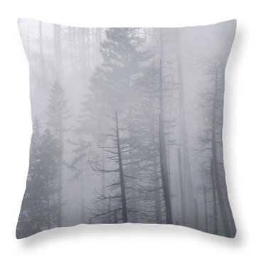 Throw Pillow featuring the photograph Veiled In Mist by Dustin LeFevre