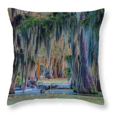 Unveiling The Secrets Of Da Swamp At Cypress Island Preserve Throw Pillow