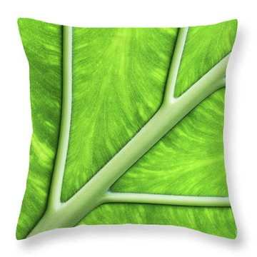 Veins Of Life #2 Throw Pillow