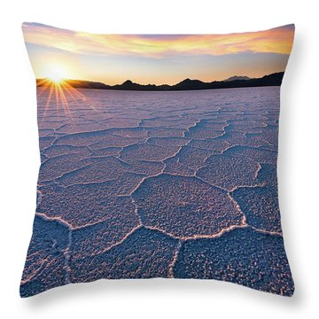 Veins Of The Earth Throw Pillow