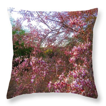 Vekol Wash Desert Ironwood In Bloom Throw Pillow