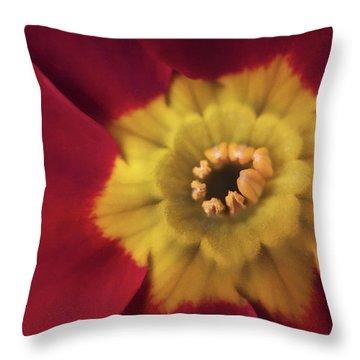 Velvet Crush Throw Pillow