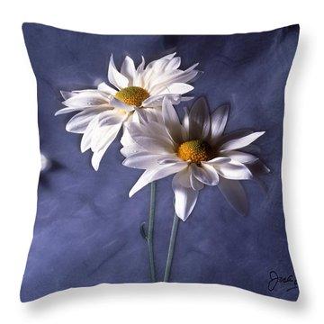Velvet Daisies Throw Pillow by Jack Eadon