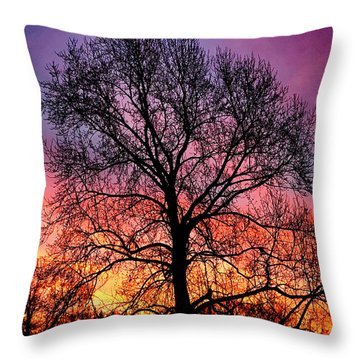 Velvet Mood Throw Pillow