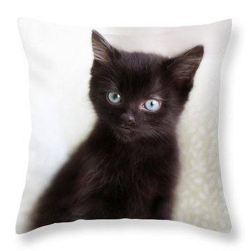Throw Pillow featuring the photograph Velvet - Square Version by Amy Tyler