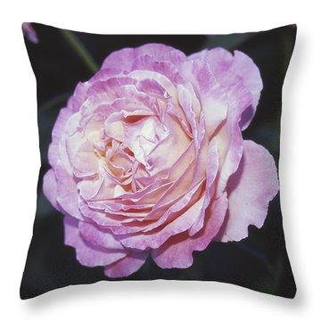 Velvia Rose Throw Pillow