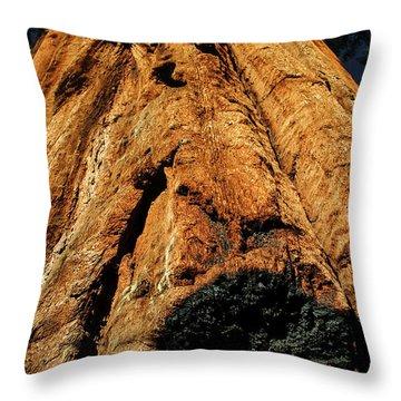 Venerable Giant Throw Pillow