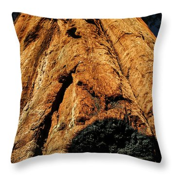 Venerable Giant Throw Pillow