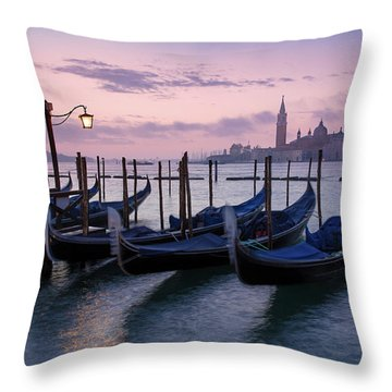 Throw Pillow featuring the photograph Venice Dawn II by Brian Jannsen