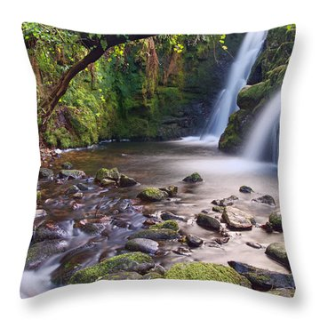 Vennford Waterfall On Dartmoor Throw Pillow