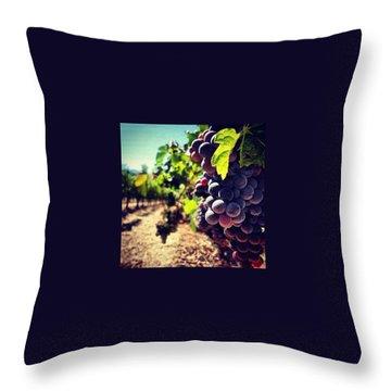Grape Throw Pillows