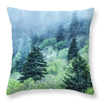 Verdant Forest In The Great Smoky Mountains Throw Pillow