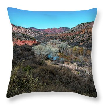 Verde Canyon Oasis Throw Pillow