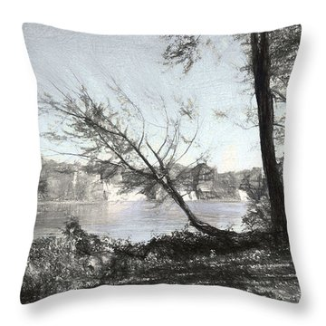 Vergennes Falls Digital Charcoal Throw Pillow