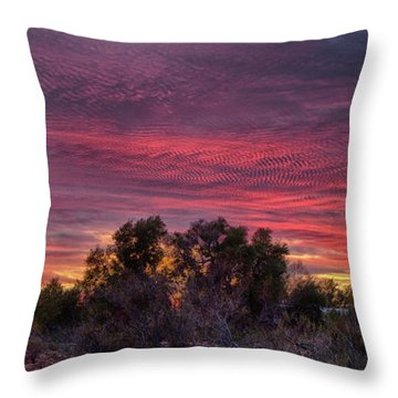 Verigated Sky Throw Pillow