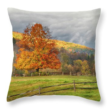 Throw Pillow featuring the photograph Vermont Fall Colors After The Rain by Jeff Folger