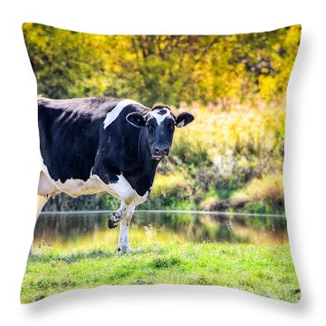 Vermont Farms.01 Throw Pillow by Craig Szymanski