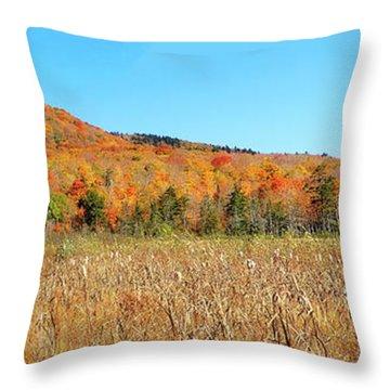 Vermont Foliage 1 Throw Pillow