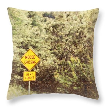 Vermont In Winter Throw Pillow