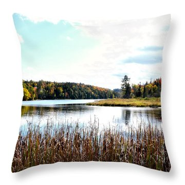 Vermont Scenery Throw Pillow by Rena Trepanier