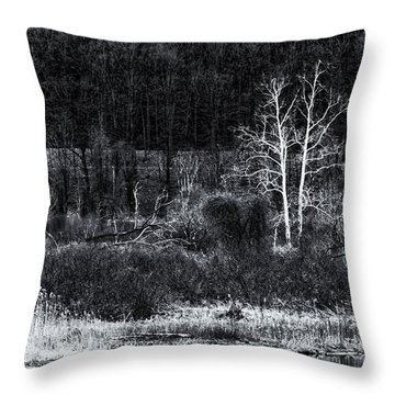 Throw Pillow featuring the photograph Vermont Spring In Black And White by Tom Singleton