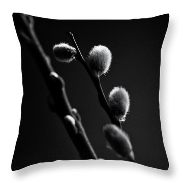 Vernal Awakening Throw Pillow by Susan Capuano